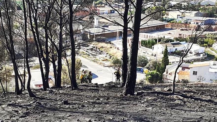 Oliva  Jornada para evaluar daños tras el incendio forestal de Santa Anna