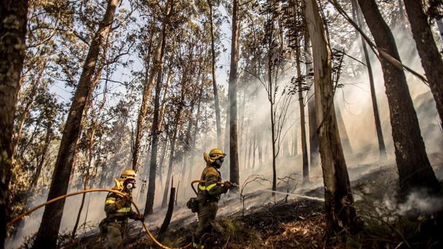 Incendios en Galicia | 16 fuegos estabilizados y controlados este viernes