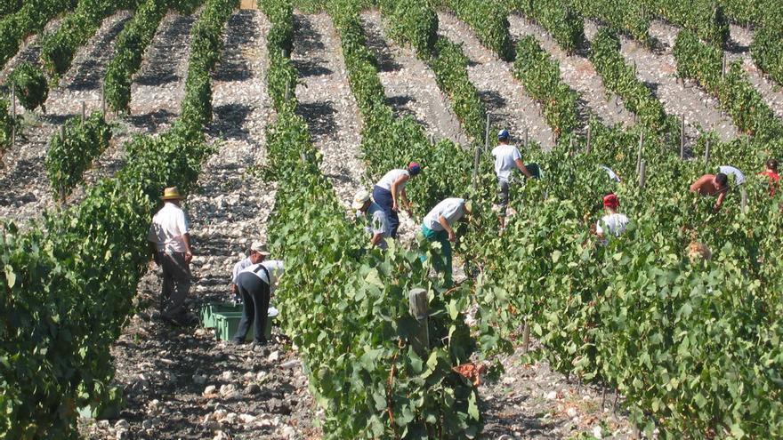 El Programa de Fomento de Empleo Agrario generará 13.478 puestos de trabajo