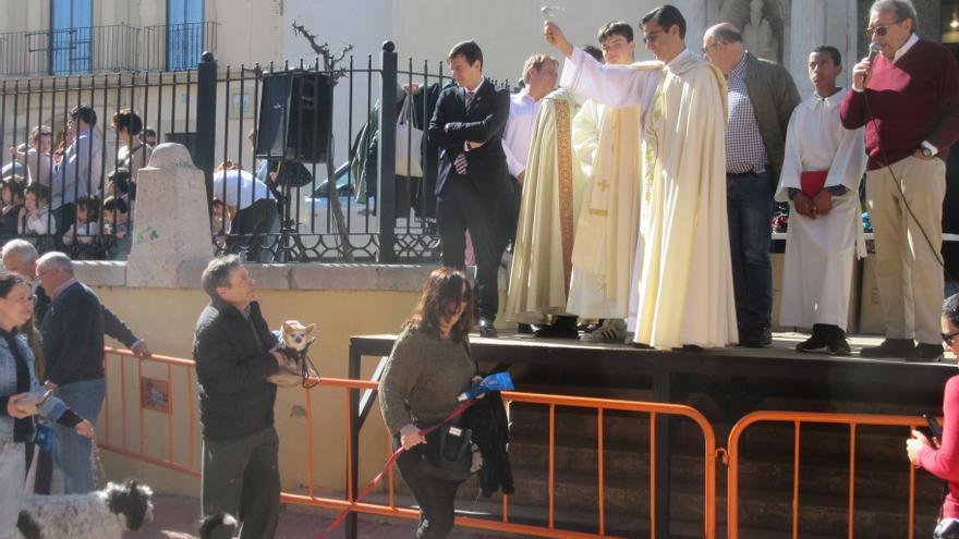 Burjassot suspende la bendición de animales de San Antonio Abad