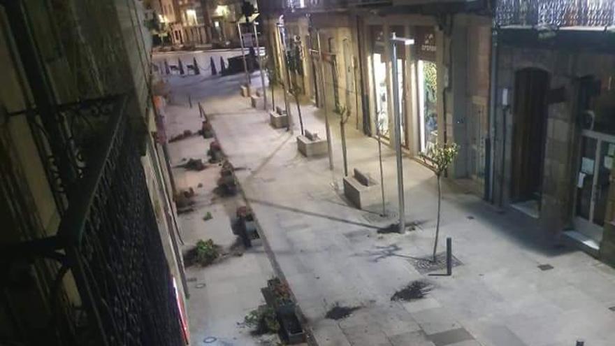 Investigada una joven de Celanova por arrancar plantas de jardineras públicas