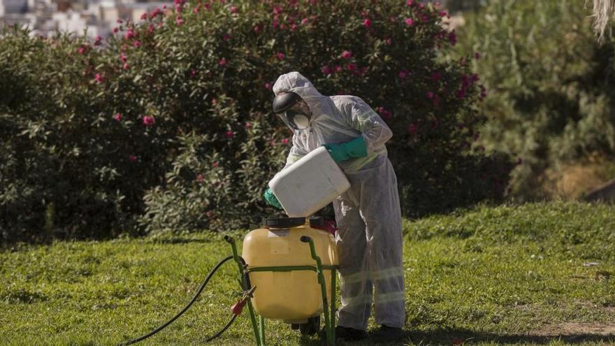 Suben a 40 los sospechosos de tener virus del Nilo en Andalucía