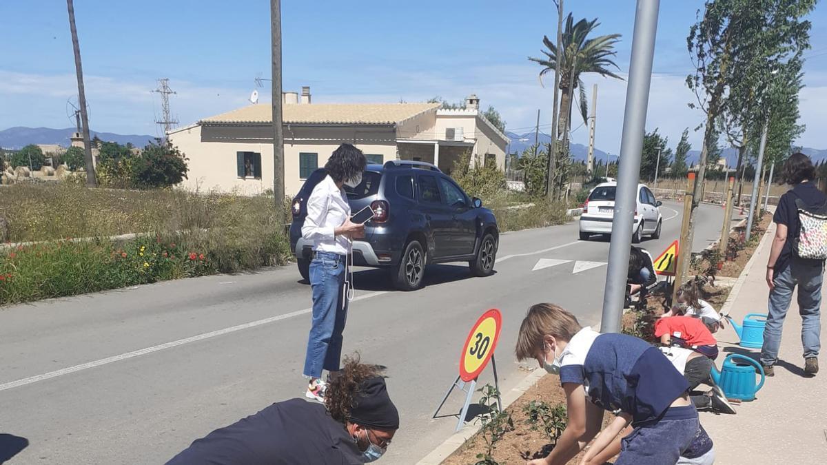 Alumnos del colegio público en plena faena de siembra de arbustos.