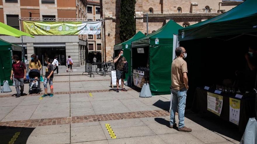 Nueva jornada del mercado ecológico en Zamora, ahora con un nuevo impulso