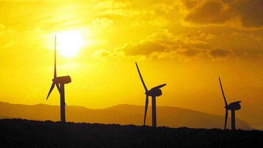 Los ecologistas alertan del impacto «inaceptable» de  las renovables