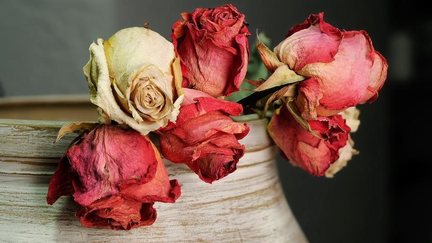 Decorar tu casa con flores secas, la tendencia del otoño