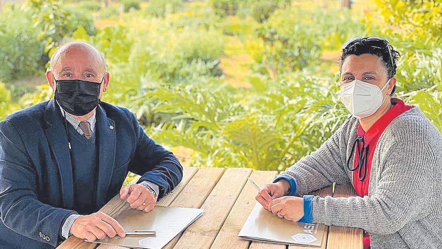 Palmario | La 'tarifa justa' tendrá que esperar otros dos años