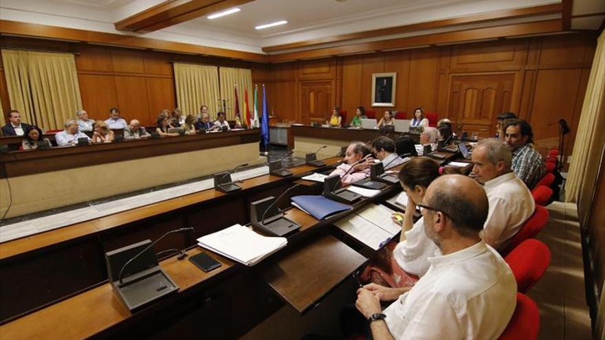 El Pleno aprobará una declaración a favor de los afectados por Idental