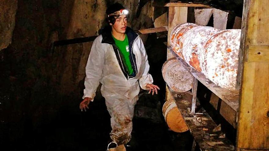 Exigen abrir el acceso a los Lagos para madurar queso en las cuevas