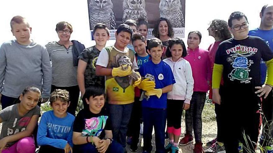Dos búhos hallados en Oliva vuelven recuperados a su espacio natural