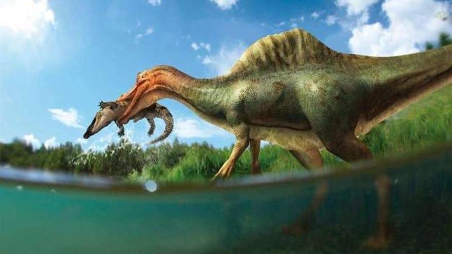 Identifican un nuevo dinosaurio en Vallibona