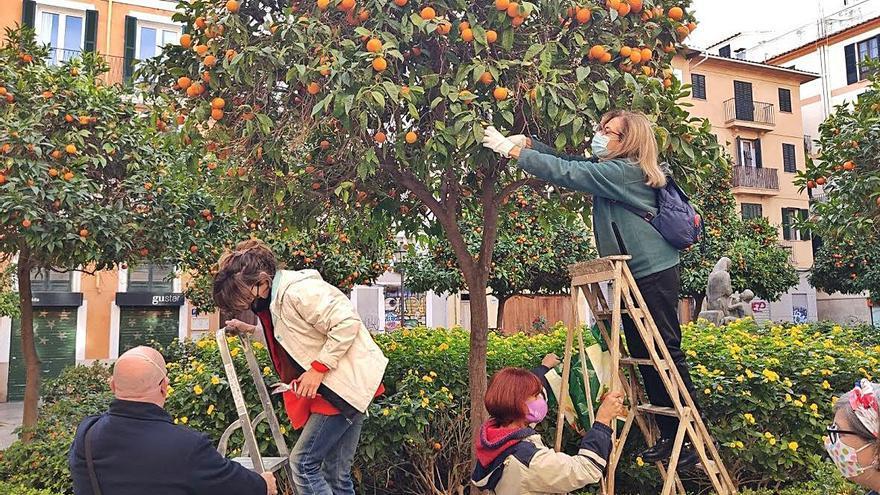 Confitura de naranja de un barrio comestible