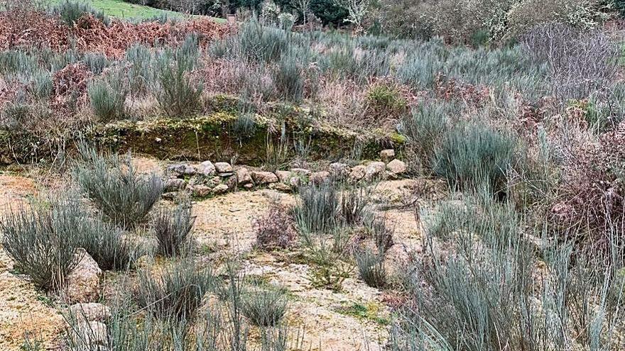 Denuncian el abandono del yacimiento arqueológico de O Bouzadoiro, en Verín