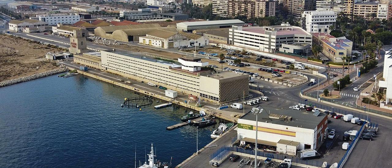 Muelles donde se proyecta la construcción del palacio de congresos de Alicante.