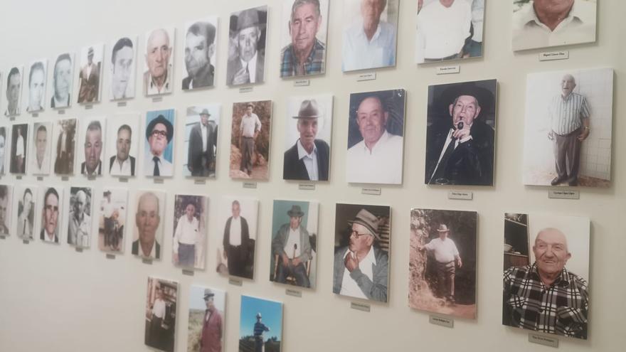Homenaje a los cochineros de Icod el Alto
