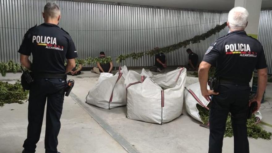 La Policía Local se incauta de 200 kilos de marihuana en Alcantarilla