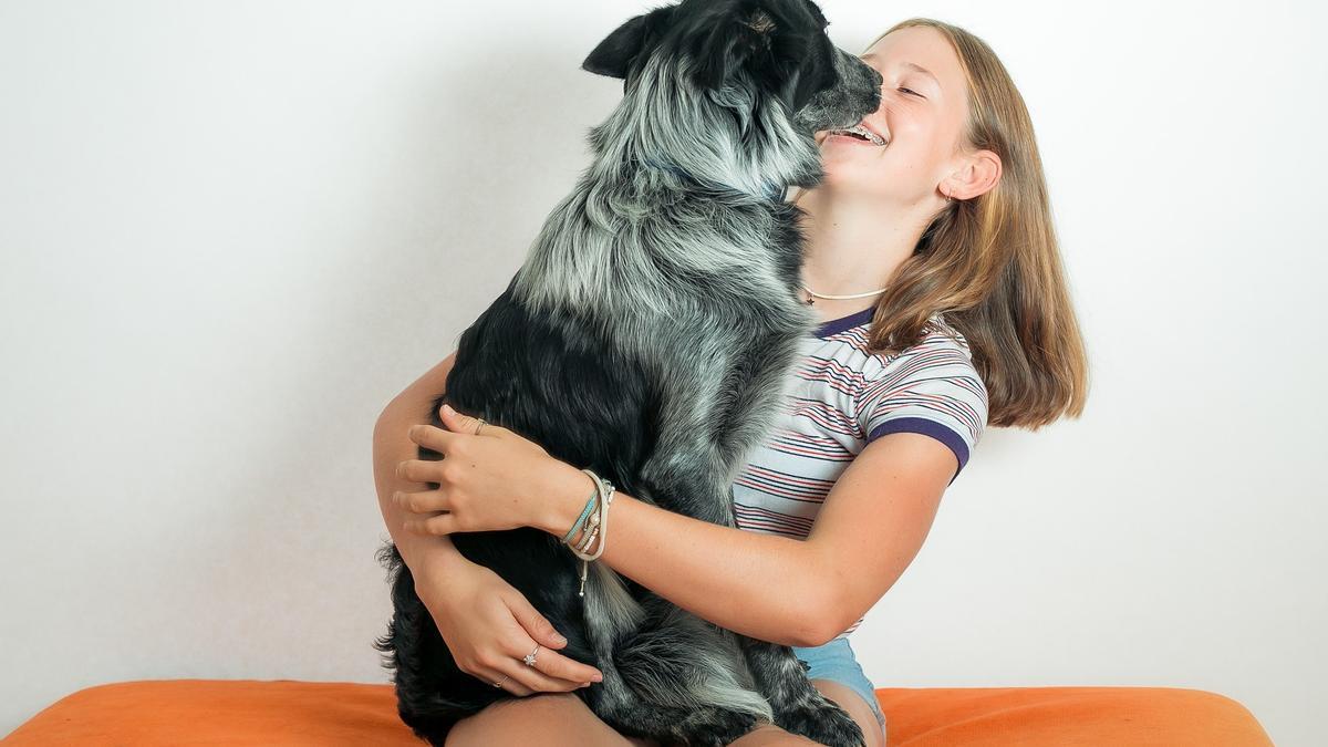 Durante verano, hay que prestar atención a las almohadillas de las patas de nuestras mascotas.