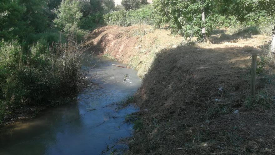 La CHE inicia actuaciones en el río Huerva para mejorar su dinámica fluvial