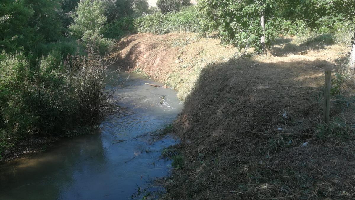 Parte del río Huerva que va a ser adaptada con los trabajos de la CHE