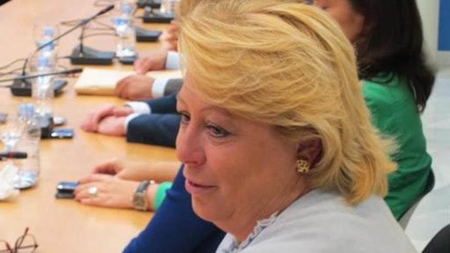 Dimite una diputada del PP de Madrid por el caso Gürtel