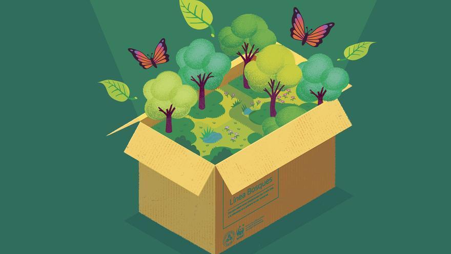 Día internacional de los Bosques: así puedes ayudar a salvar el planeta