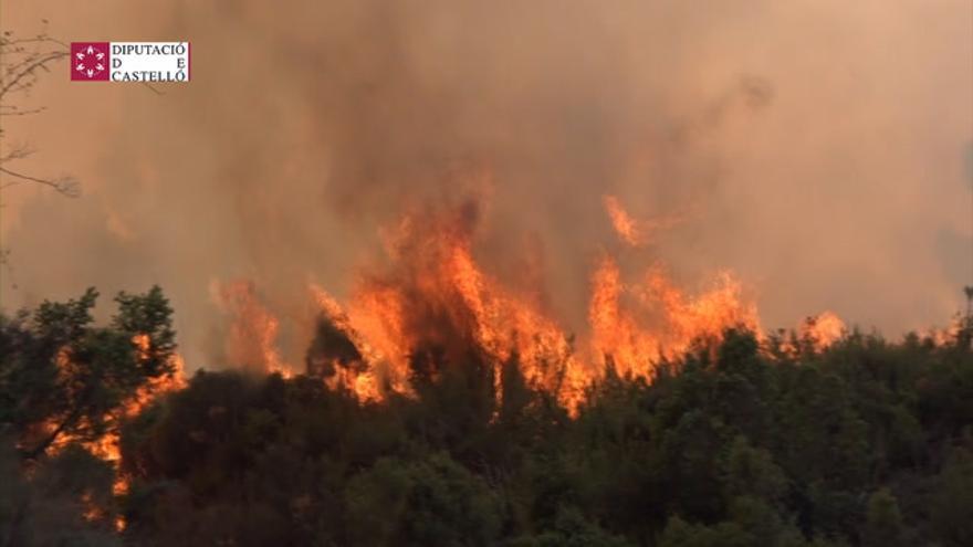 El incendio forestal de Bejís, controlado después de toda una dura noche de trabajo de bomberos