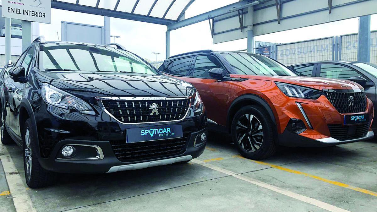 Groupe PSA reúne sus ventas de vehículos de ocasión bajo la denominación de spoticar