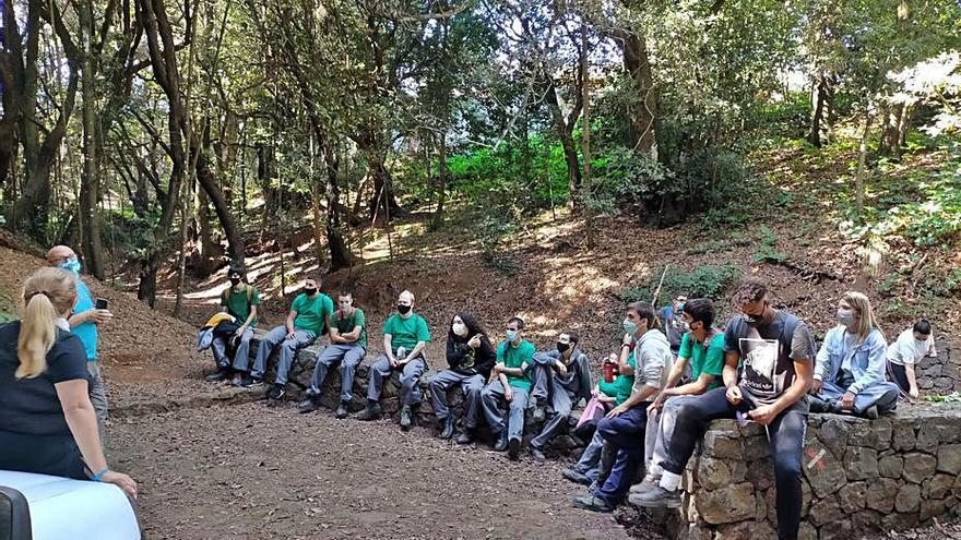 Alumnos de Jardinería y Floristería de El Sobradillo miman el medio ambiente