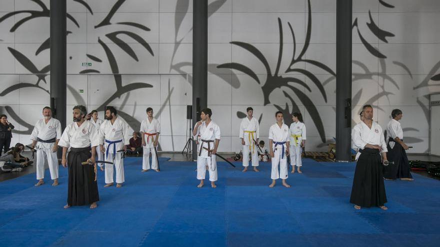 El VIII Salón del Manga de Alicante abarrota IFA