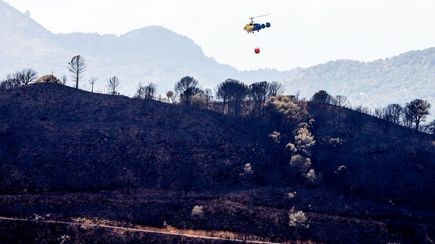 La Junta pedirá la declaración de zona catastrófica tras el incendio en Sierra Bermeja y aprobará ayudas