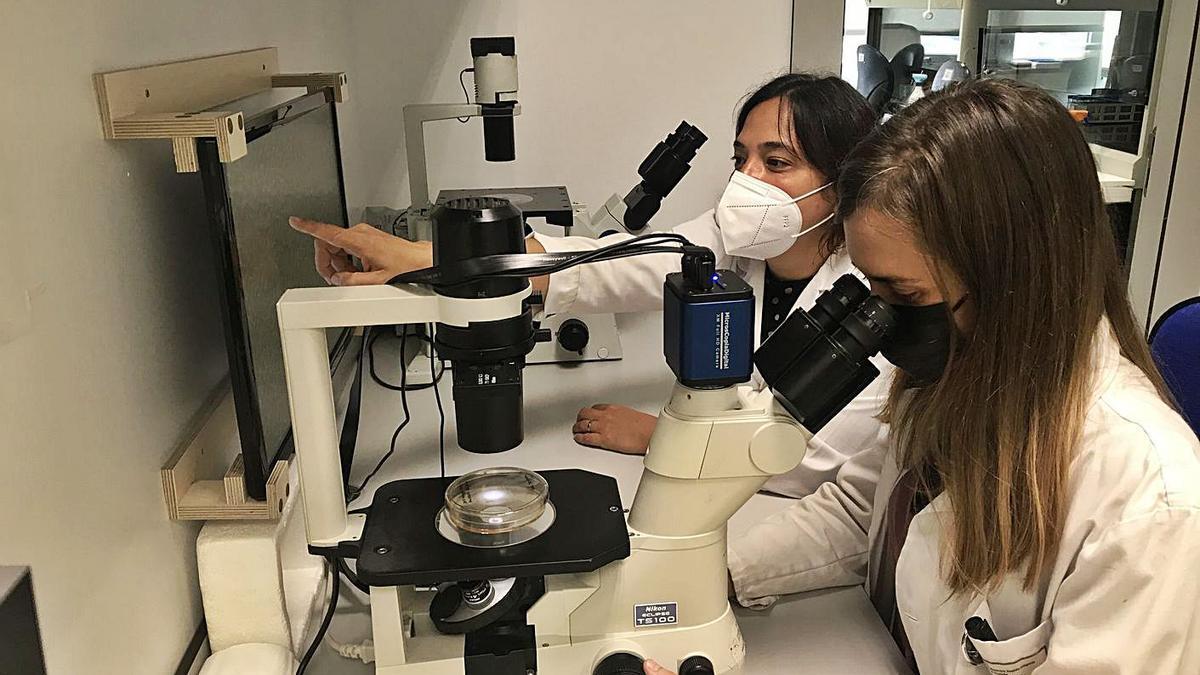 Dos investigadoras, en un laboratorio del Inibic coruñés.