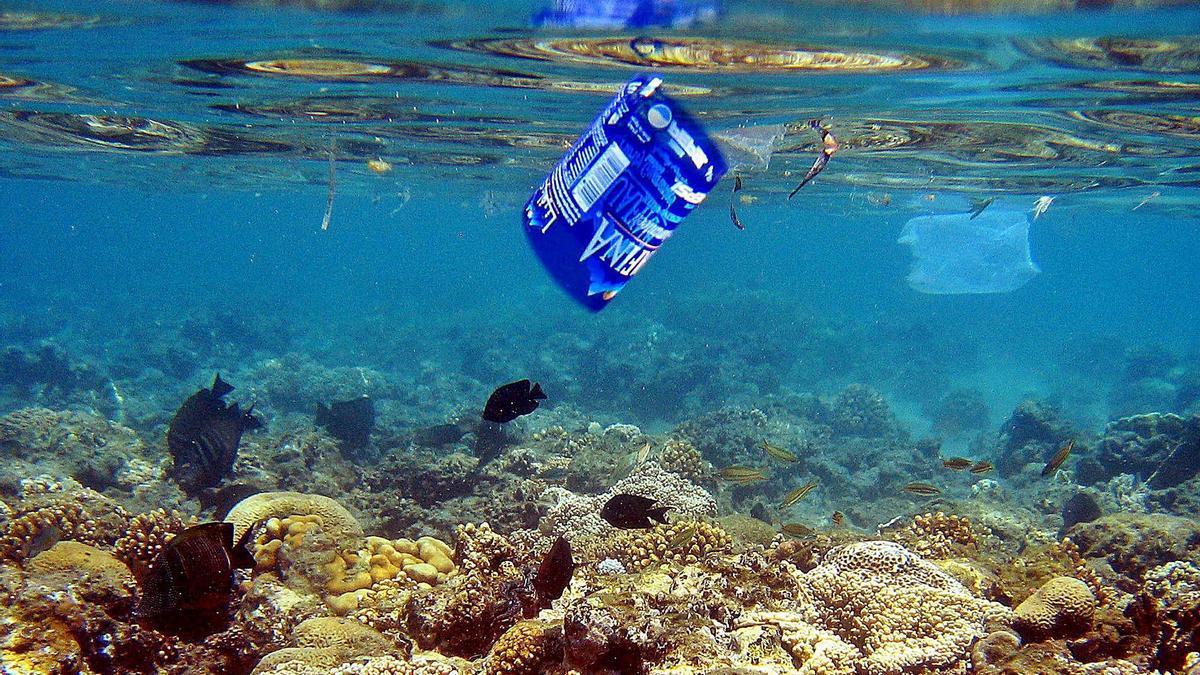 Cada vez es más frecuente encontrar plásticos de todo tipo en los mares del planeta.