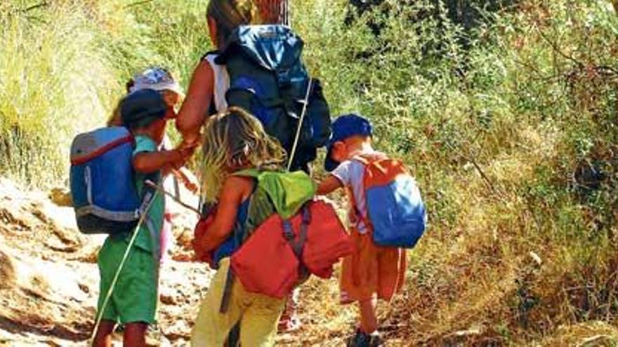 Sommerferien auf Mallorca: von Waldkindergarten bis Schulbauernhof