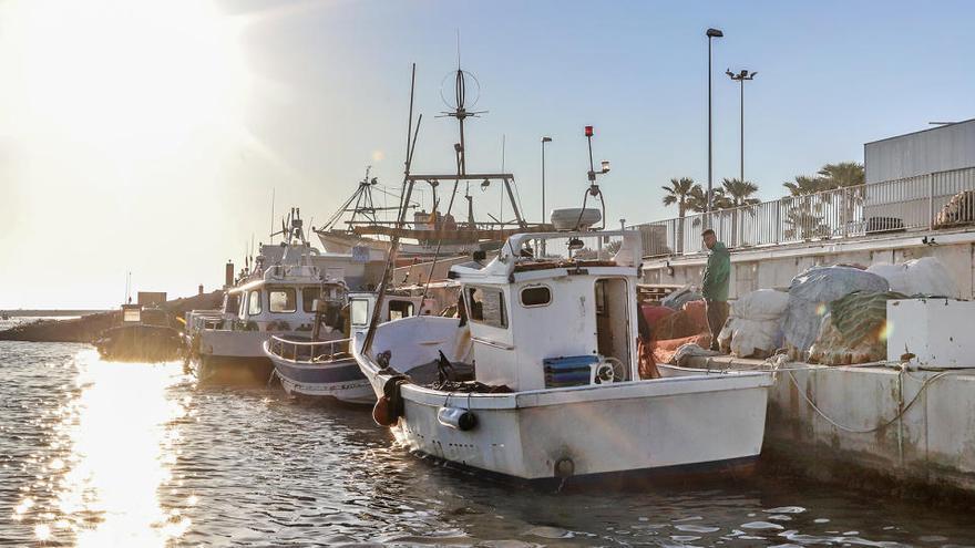 Agricultura y Economía acuerdan aceptar ERTE del sector pesquero autonómico por el Covid-19