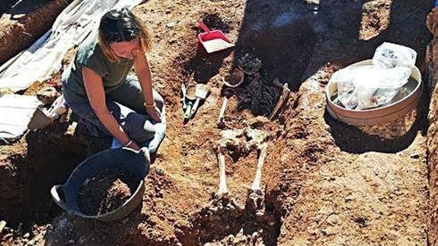 Offenbar Skelett des gefolterten Ex-Bürgermeisters von Búger freigelegt