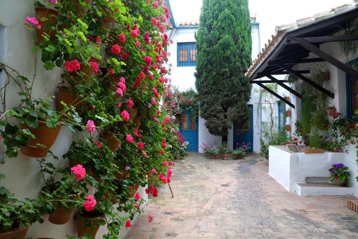 Los Patios de Córdoba: San Andrés (2)