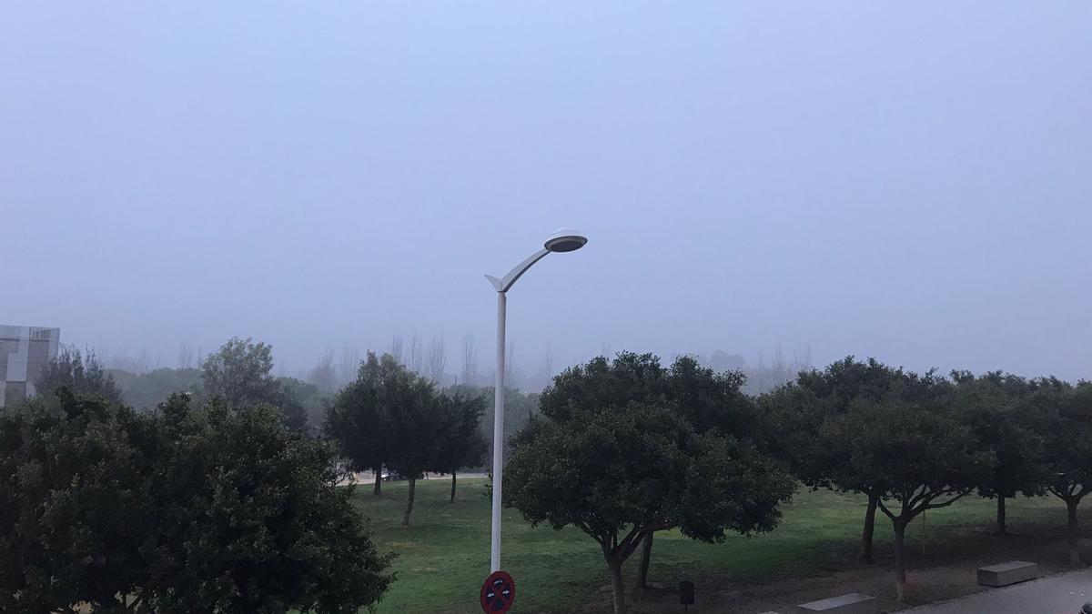 Niebla sobre el Parque de Cabecera, en València, en esta mañana de viernes.