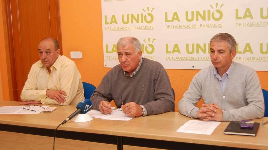 La Unió denuncia que la naranja sudafricana entra a España a un precio cada vez más barato