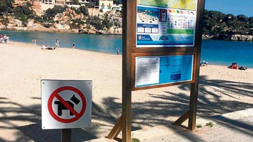 Bis zu 3.000 Euro Strafe für Gassigehen an Stränden von Porto Cristo oder s'Illot