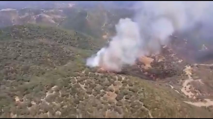 Hasta 10 medios aéreos tratan de extinguir un incendio forestal en Almodóvar