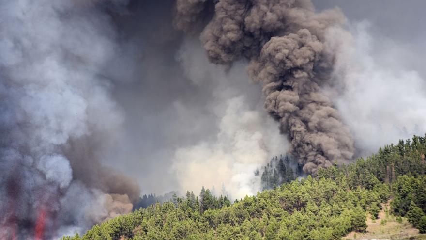 Erupción en La Palma: como un enjambre de sentimientos