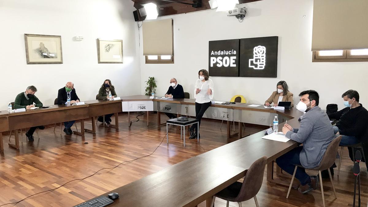Reunión de la Ejecutiva Regional del PSOE-A, encabezada por la secretaria general, Susana Díaz, en una foto de archivo.