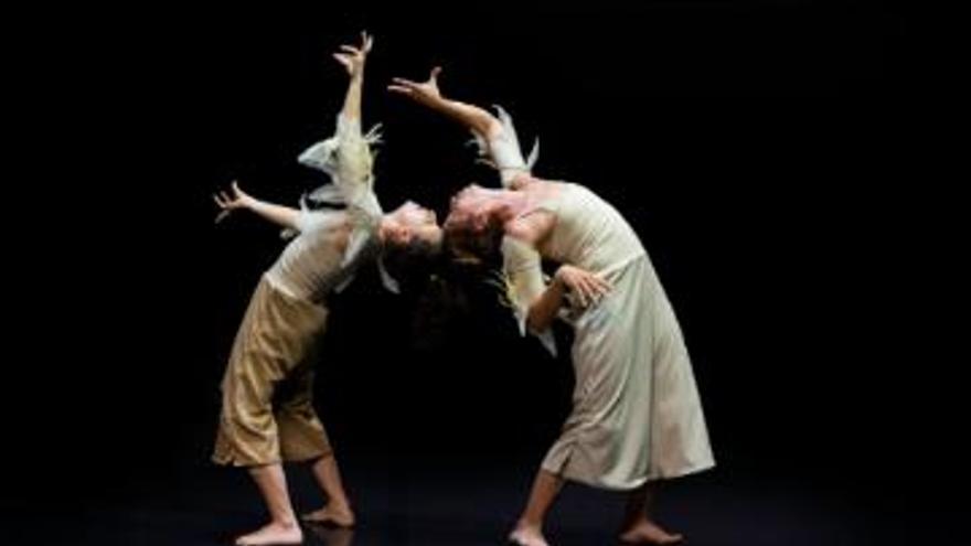 Danza en Breve – Acerina H. Toledo y Celeste Ayús Motta - Conversaciones entre plumas