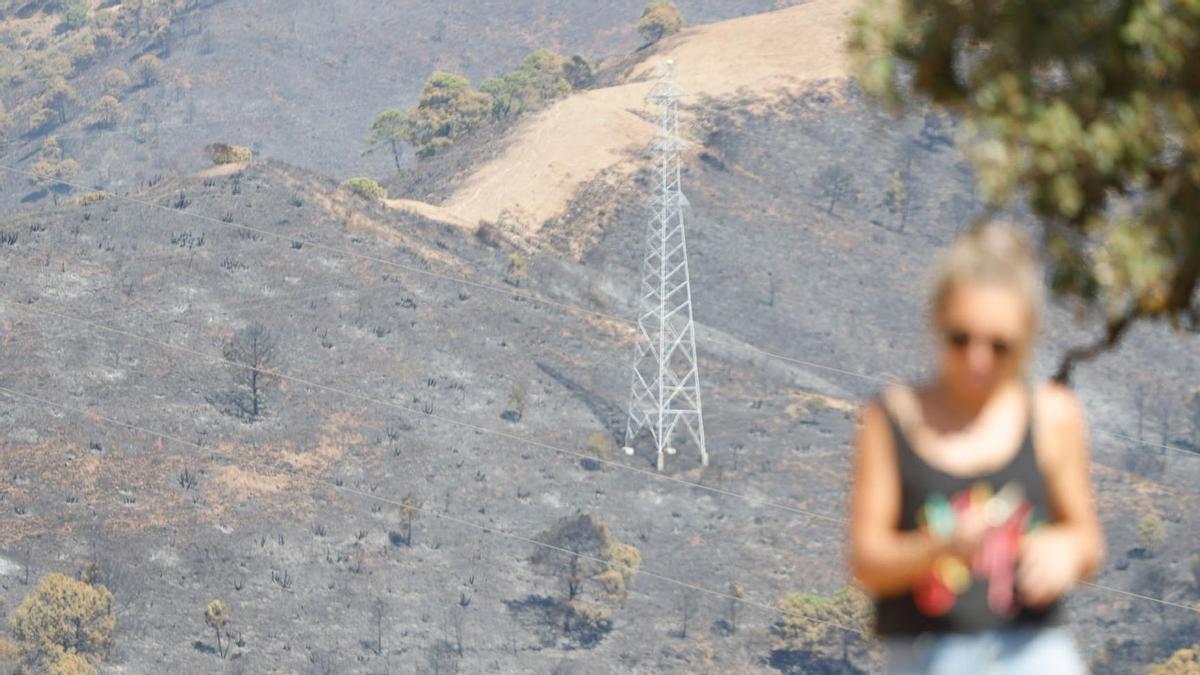 Terreno calcinado por el fuego este sábado, cuando siguen los trabajos de extinción.