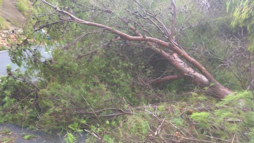 Reabren los tramos de las dos carreteras de Mallorca afectadas por el tornado