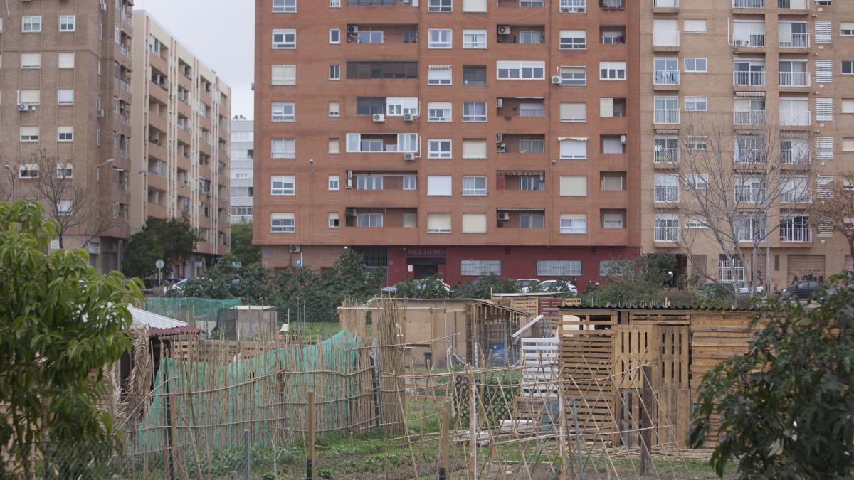 Huertos urbanos del PAI de Benimaclet.