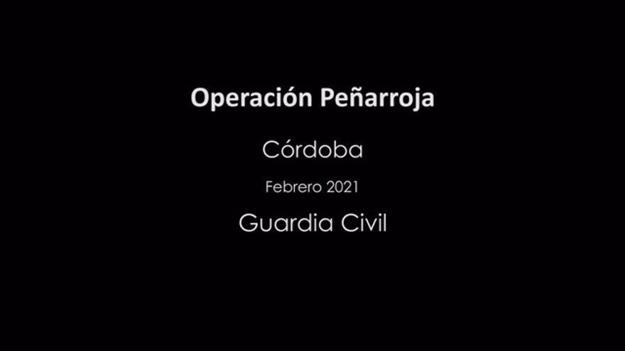 La Guardia Civil desarticula una banda dedicada al tráfico de droga en el norte de la provincia