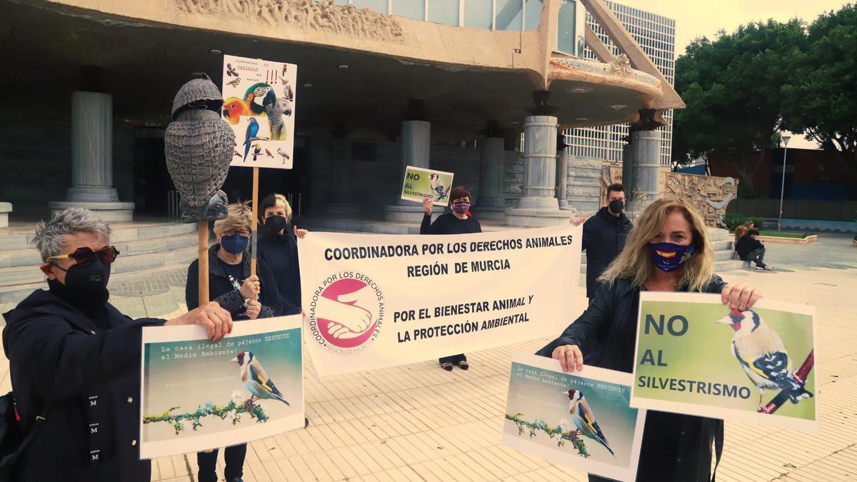 Protesta animalista contra el silvestrismo ante la Asamblea Regional.