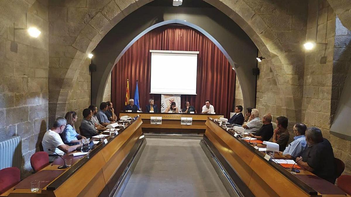 Imatge d'un ple del Consell d'Alcaldes celebrat de forma presencial