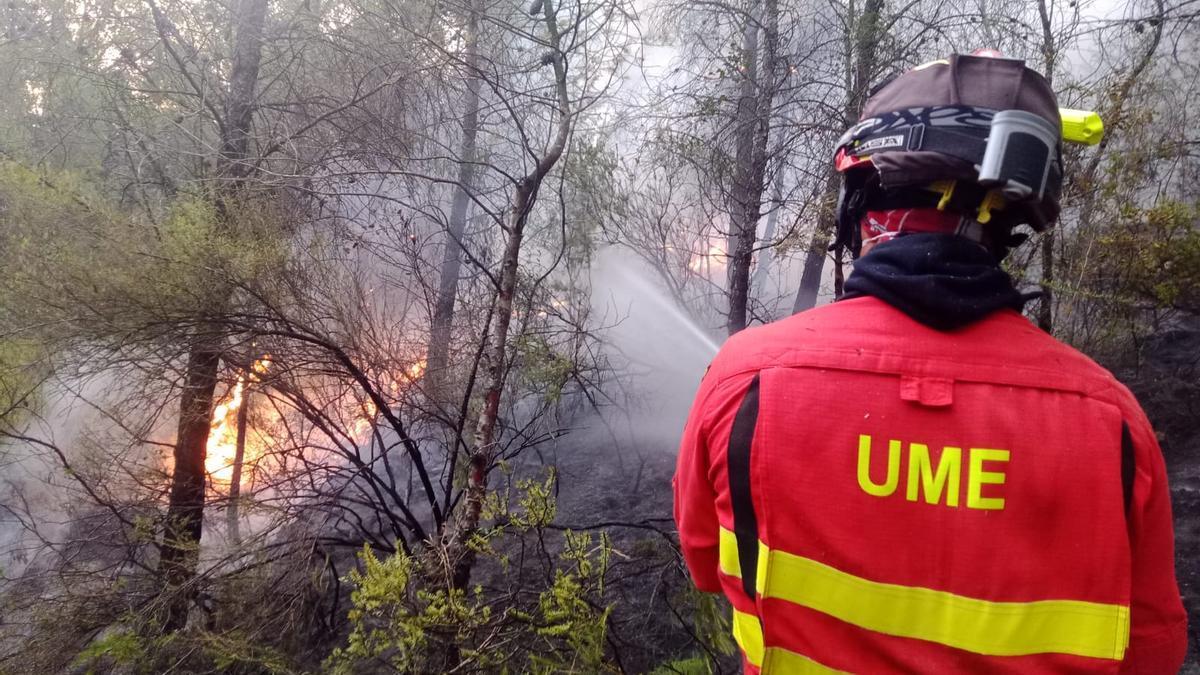Incendio forestal de Azuébar.